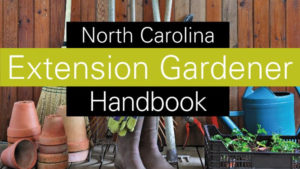 Cover photo for Quick Links to Extension Gardener Tools:  Handbook, Plant Database, Online Classes, Newsletter