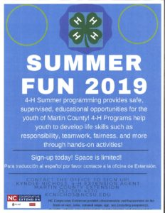2019 4-H Summer Fun Flyer