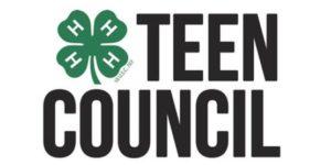 Teen Council logo image