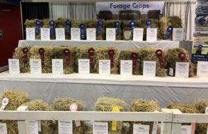 Cover photo for Update - 2021 State Fair Hay Show Contest