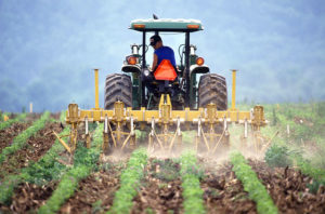 farmer cultivating crop photo